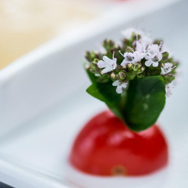 dorf wirt restaurant 50 deko tomate